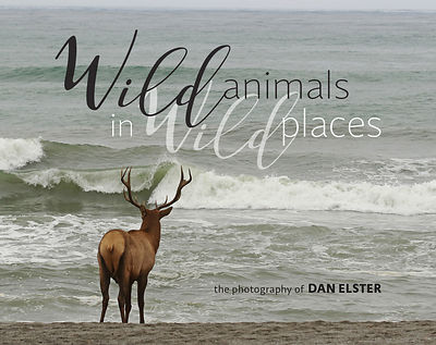 "Pre Order ""Wild Animals in Wild Places"" photos"