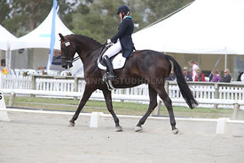 SI_Festival_of_Dressage_310115_Level_6_7_MFS_0628
