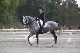 SI_Festival_of_Dressage_300115_Level_6_NCF_0165
