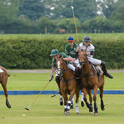 Ranksboro Polo photos