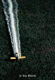 A plane sprays pesticides on a farm.