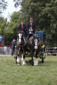 HOY_230314_clydesdales_3550