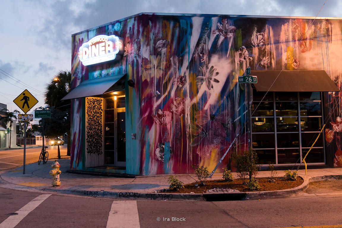 A painted building in the Wynwood art district, Miami, Florida.