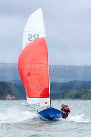 RS200 371, adidas Poole Week 2016, 20160821604