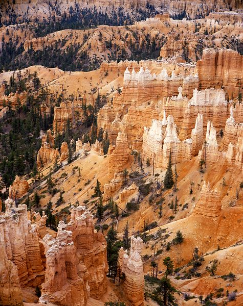 Southwest_D095021_Bryce_Canyon_TWL_-_Preview_-_Web