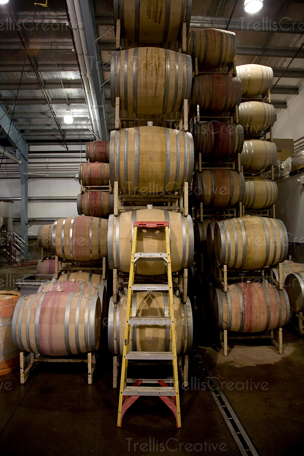 A ladder leans against several stacked oak wine barrels