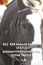 052__KSB_Kennels_Exercise_161212