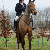 The Cottesmore Hunt at Town Park Farm 5/1 photos