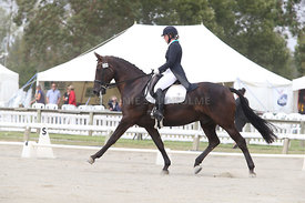 SI_Festival_of_Dressage_310115_Level_6_7_MFS_0642