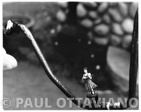 Bike Ornament | Paul Ottaviano Photography