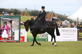 Canty_A_P_131114_Side_Saddle_1241
