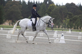 SI_Festival_of_Dressage_300115_Level_4_JLT_0128