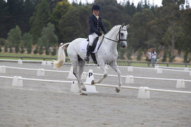 SI_Festival_of_Dressage_300115_Level_4_JLT_0122