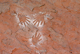 Ancient Anasazi Handprint