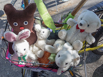 Bear and Bunnies in the Easter Basket. Photo by Cindy A. Pavlinac, www.CAPavlinac.com