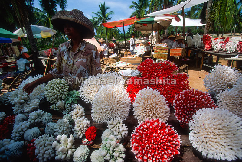 Coral that has been cleaned and died is sold to tourists. Many reefs are being destroyed to gather corals..Sanya Market.Hainan, China