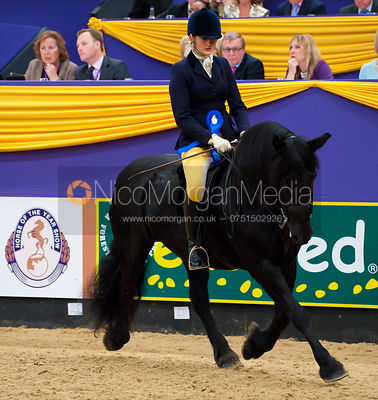 HOYS M&M Pony Championship photos