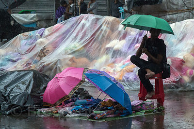 A man sells large stuffed animals in monsoon rains, Newmarket, Kolkata, India
