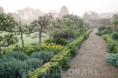 Walled Garden features gravel paths, box hedging, beds of herbaceous perennials and espaliered apple trees. Rousham House, Bicester, Oxon, UK