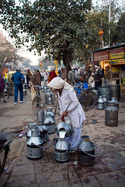 India - Delhi - A milkman pours milk into an churn at dawn in Old Delhi