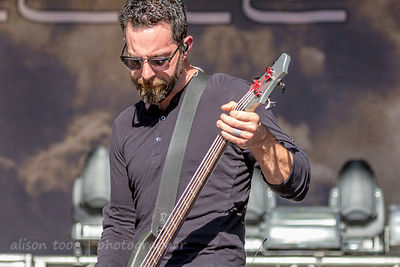 Dean Bernardini, bass, Chevelle, Aftershock 2014