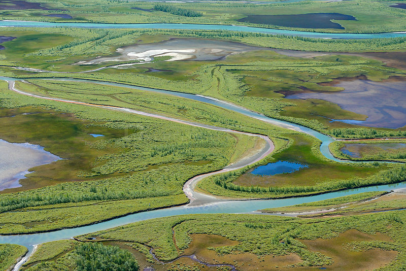Aerial view of the Rapa river delta, Sarek National Park, Greater Laponia Rewilding Area, Lapland, Norrbotten, Sweden, June 2013.