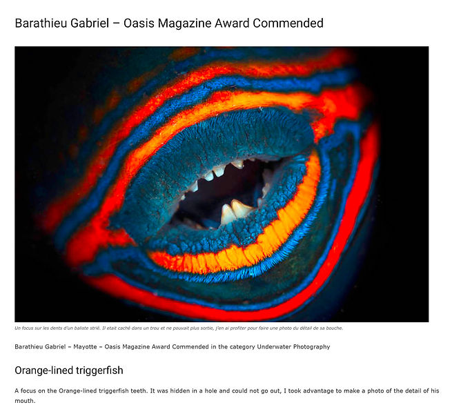 Barathieu_Gabriel_-_Oasis_Magazine_Award_Commended_-_OASIS_PHOTO_CONTEST