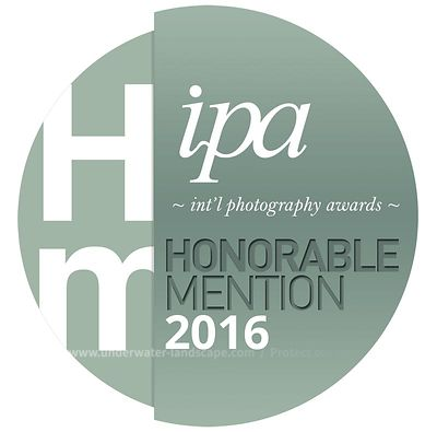 INTERNATIONAL PHOTOGRAPHY AWARDS™ 2016 Honorable mention