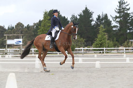 SI_Festival_of_Dressage_310115_Level_8_MFS_1135