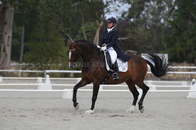 SI_Festival_of_Dressage_300115_Level_9_SICF_0489