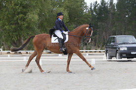 SI_Festival_of_Dressage_310115_Level_8_MFS_1144