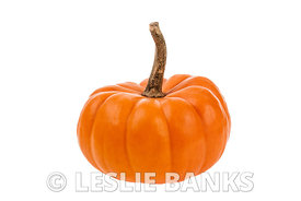Small orange pumpkin isolated on white