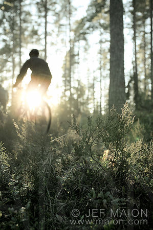 Mountain biking in Finland images