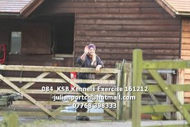 084__KSB_Kennels_Exercise_161212