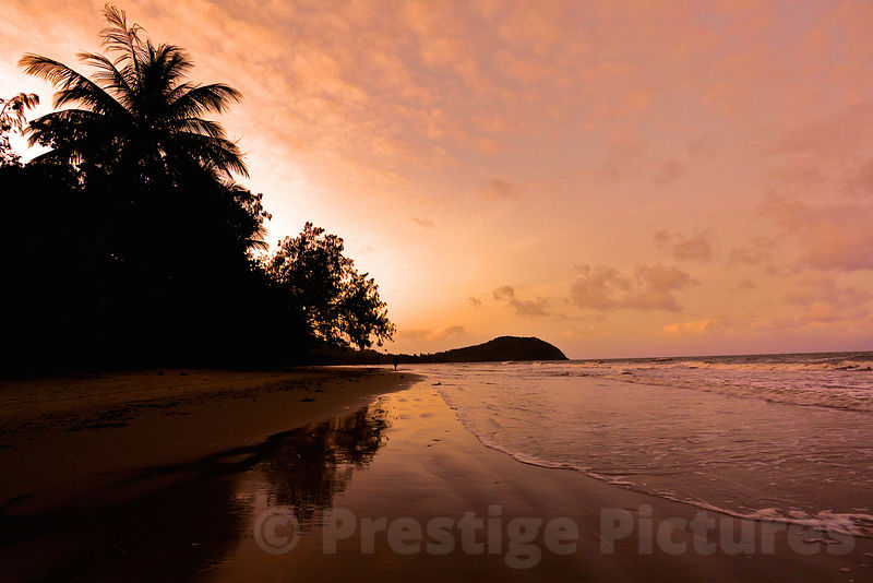 Beautiful Beach at Sunset with Palm Trees and Gentle Waves Lapping on the Shore