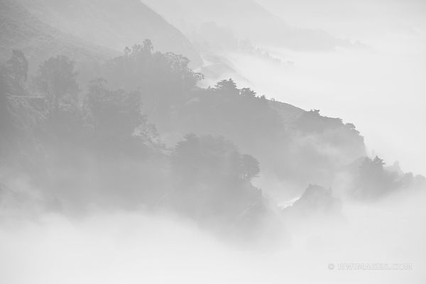 FOGGY BIG SUR PACIFIC COAST CALIFORNIA BLACK AND WHITE
