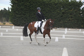 Canty_Dressage_Champs_071214_009