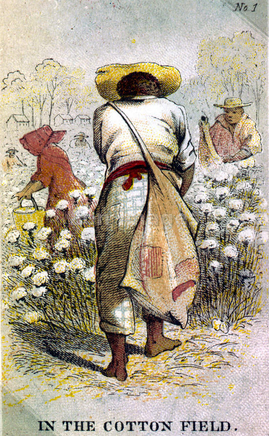 Card depicting slaves picking cotton