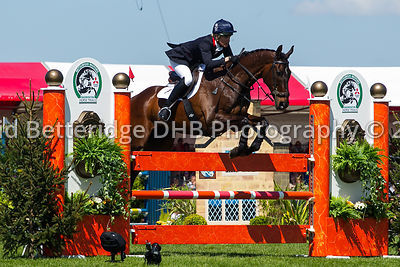Badminton 2013 - Show Jumping photos