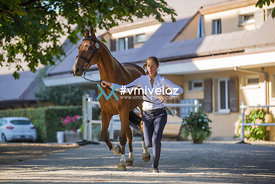 Equissima® Lausanne | 03.09.2016