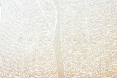 close up of net - abstract graphic design