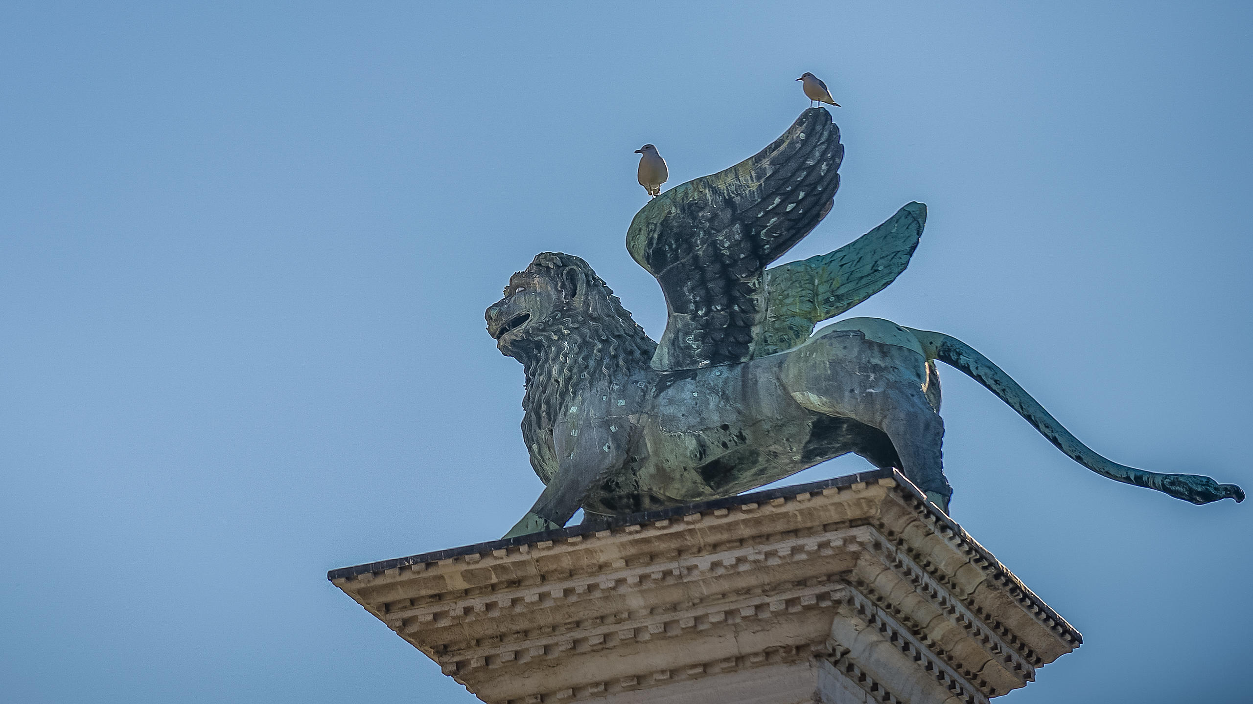 Lion of San Marco Pedestal with seagulls