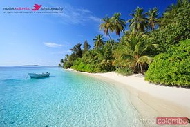 Tropical beach with palm trees and boat, Maldives