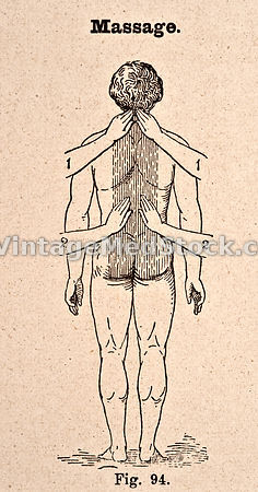 Massage (back and neck muscles)