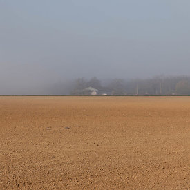 Brume de printemps, France, 2013