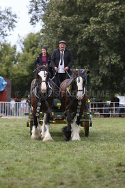 HOY_230314_clydesdales_3552