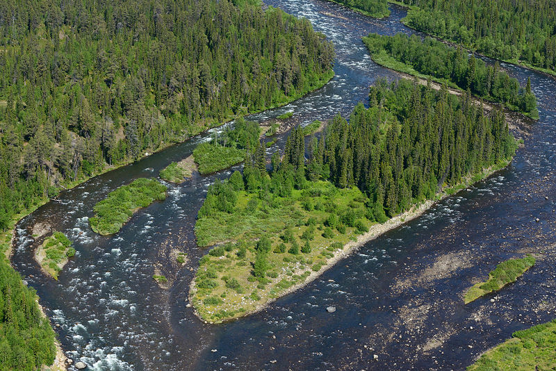 Aerial view of river flowing through taiga boreal forest, Sjaunja Bird Protection Area, Greater Laponia Rewilding Area, Lapland, Norrbotten, Sweden, June 2013.