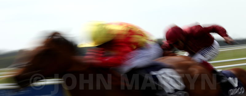 Horse Racing photos