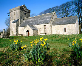 llanfrynach church and daffodils cowbridge vale of glamorgan south wales uk