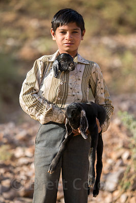 Candid photo of a boy carrying his baby goat in his shirt along a country road in Kharekhari village, Pushkar, Rajasthan, India